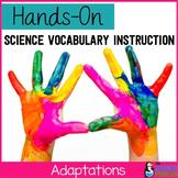 Adaptations Vocabulary Lesson