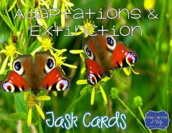 Animal Adaptations & Plant Adaptations & Extinction Task Cards