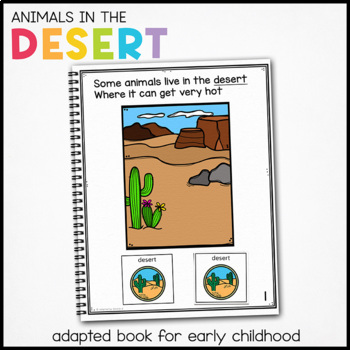 Tortoise Tortoise What Do You See?: Adapted Book for Speci
