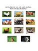 Adapted Farm Animal Book
