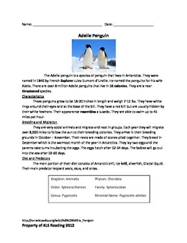 Adelie Penguin - Review Article Questions Vocabulary Activ