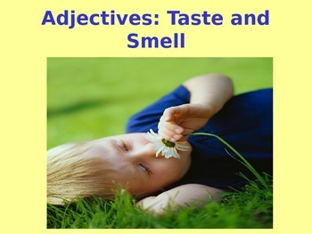 Adjectives: Taste and Smell