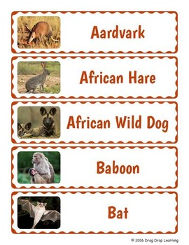 African Animals Word Wall