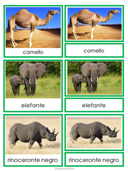 African Animals 3-part Cards in Spanish - Animales de Africa