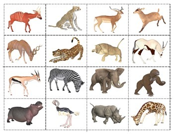 African Animals: Match-up Cards
