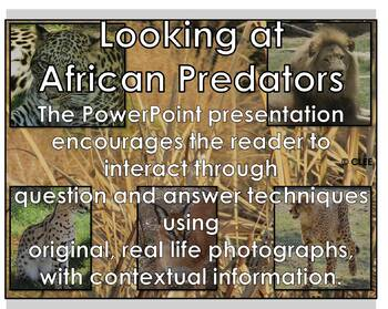 African Cats - Interactive PowerPoint presentation