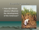 African Slave Trade: Powerpoint, Activity, Graphic Organiz