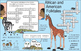 African and American Folktales Two-Page Activity Set