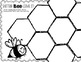 All About Bees minibook, graphic organizers freebie!