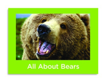 All About Bears Non-fiction Book PK-1