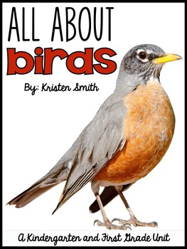 All About Birds- for kindergarteners and first graders
