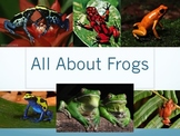All About Frogs Powerpoint