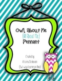 All About Me {OWL About Me) Pennant Banner