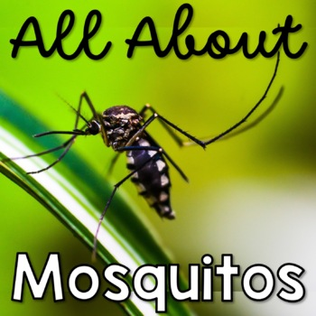 All About Mosquitoes Sample