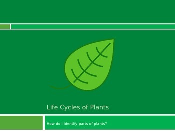 All About Plants PowerPoint