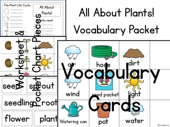 All About Plants! Vocabulary Packet for Plant Life Cycle &