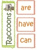 All About Raccoons- Tree Map