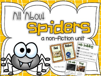 All About Spiders