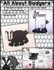 All About Woodland Animals-BADGERS!!! (crafts, writing act