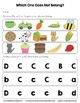 All About the Letter C Independent Practice - Letter of the Week
