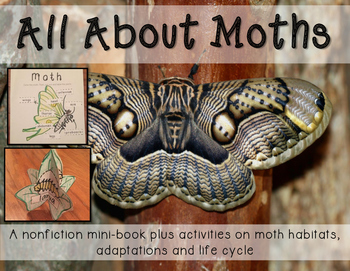All about Moths Minibook including habitats, life cycle an