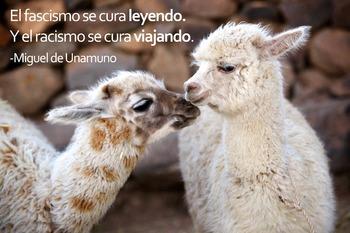 Alpaca with Spanish Quote by Unamuno: Digital Download