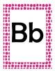 Alphabet Flash Cards/Bulletin Board Signs  (Hot Pink Dots)