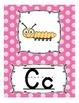 Alphabet Line Display Cards