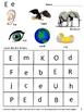 Alphabet Recognition Worksheets P-K, K, Special Education, Autism