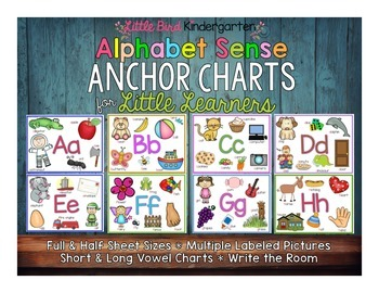 Alphabet Anchor Charts for Little Learners Plus Silent /e/