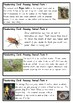 Amazing Animal Facts - Fun handwriting practice - Foundation