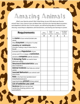Amazing Animals Project