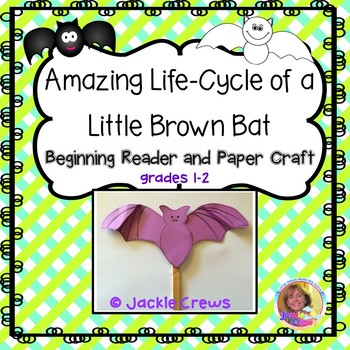 Amazing Life-Cycle of a Little Brown Bat: Beginning Reader