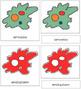 Amoeba Nomenclature Cards (Red)