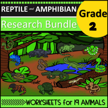Amphibian and Reptile Research Second Grade