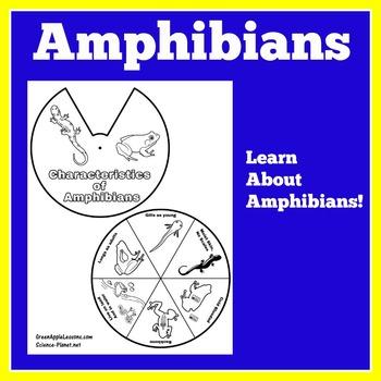 Amphibians Activity