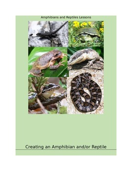 Amphibians and Reptiles Lessons