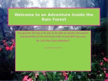 An Adventure Inside the Rainforest