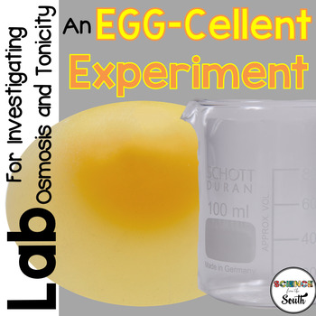 An EGG-Cellent Experiment for Investigating Osmosis and To
