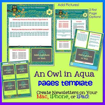 Pages OWLS IN AQUA - Newsletter Template - Create on iPads