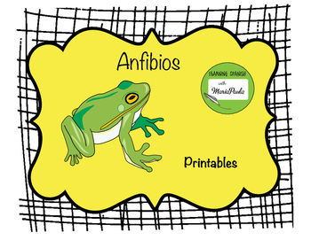 Anfibios (montessori in Spanish) la rana (the frog)