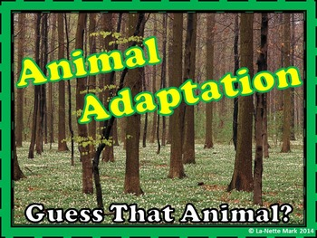 Animal Adaptation - Guess The Animal PowerPoint