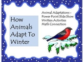 Animal Adaptations: How Animals Adapt To Winter