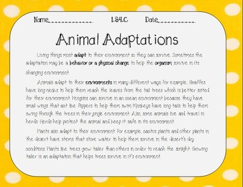Animal Adaptations LS4.C
