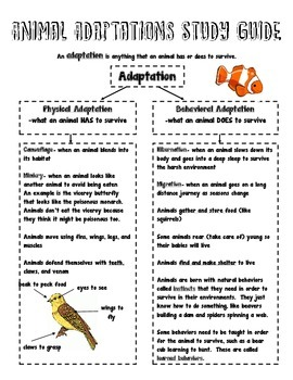 Animal Adaptations Study Guide