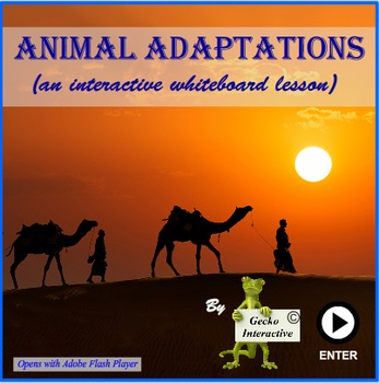 Animal Adaptations - a SmartBoard and Interactive Whiteboa