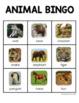 Animal BINGO - Engaging Phonics Game