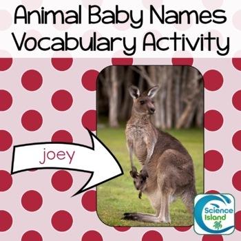 Animal Baby Names Vocabulary Activity