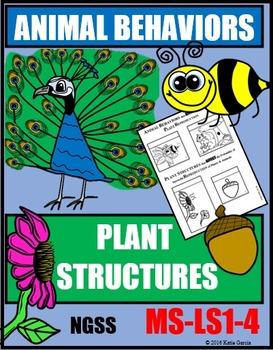 Animal Behaviors & Plant Structures