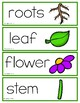 Animal, Birds, and Living and Nonliving Things Vocabulary Cards